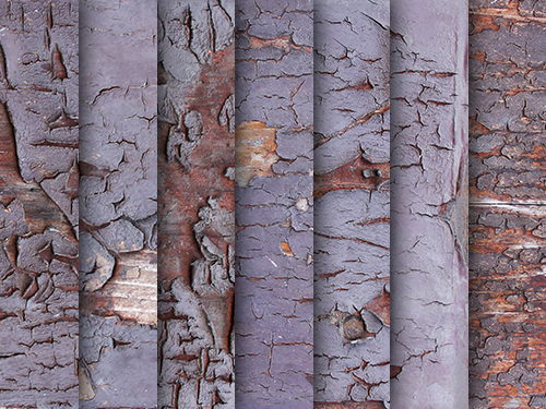 Exfoliated wood paint