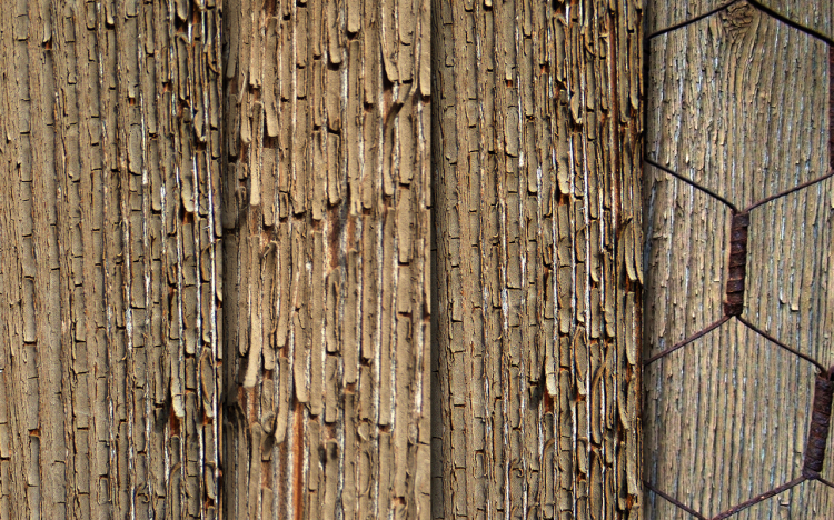 texture-exfoliated-wood