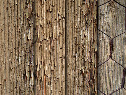 Exfoliated wood