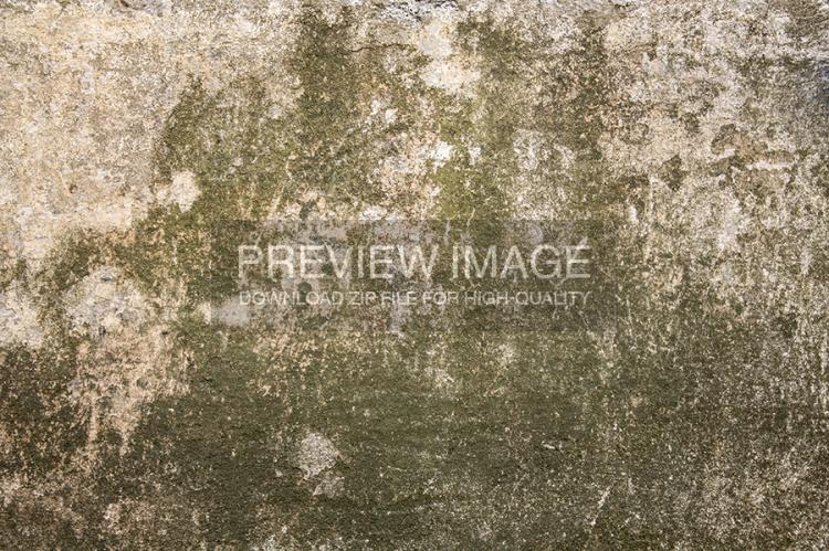 mossy-green-stone-6-www-raduluchian-com