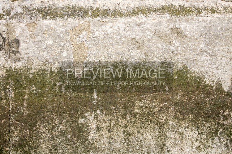 mossy-green-stone-8-www-raduluchian-com