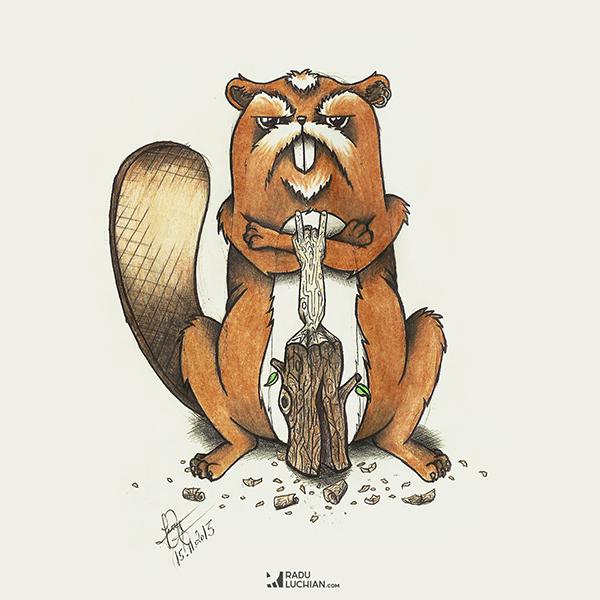 Hard rock beaver